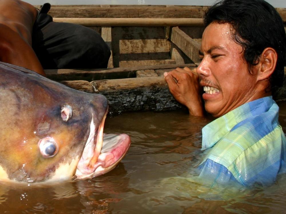 Cambodia's Beating Heart