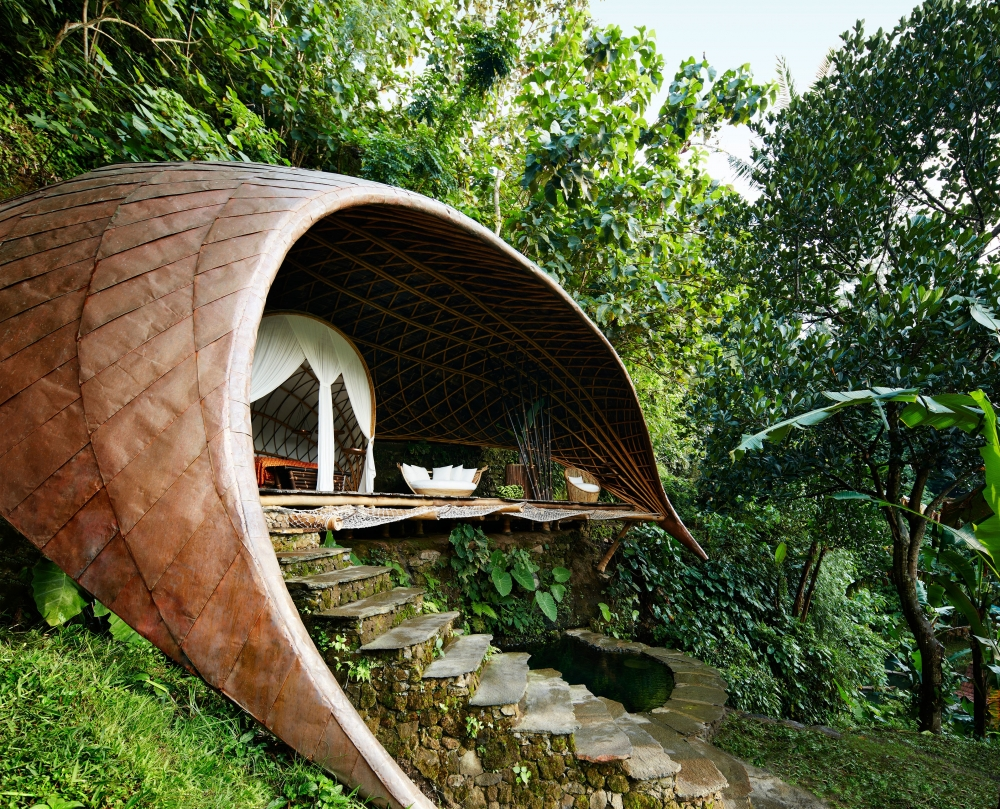 The Existence of 12 Treehouses Around the Globe