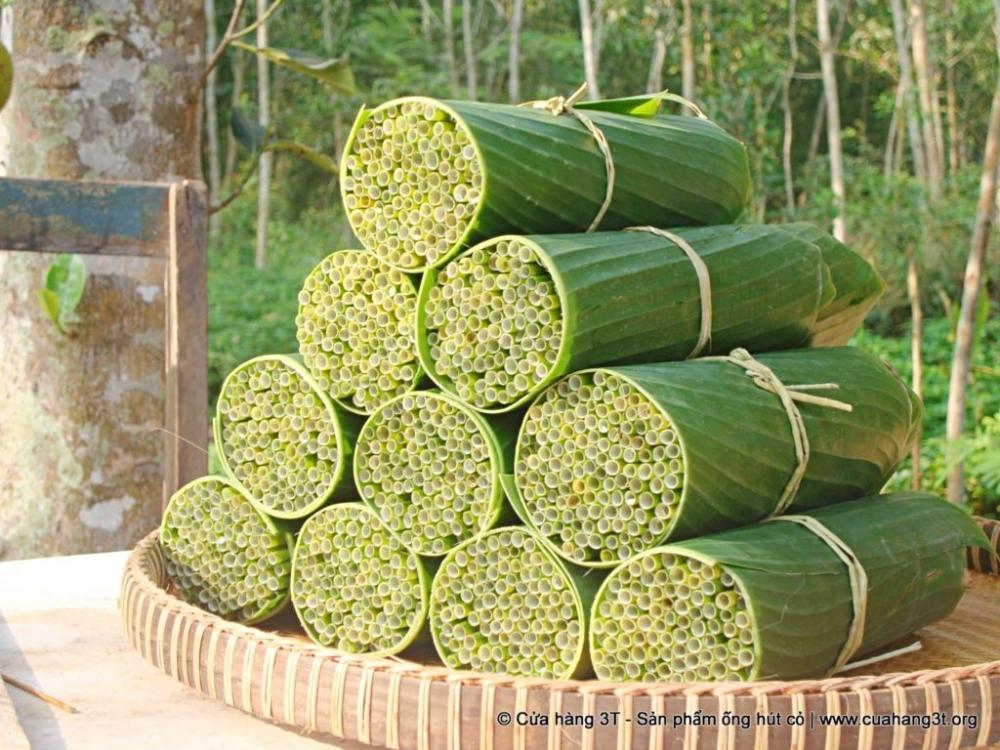 Grass Straws from Vietnam Become A Great Zero-Waste Alternative to Plastic Straws
