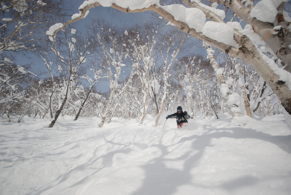 The Japanese Island with Lightest, Fluffiest Snow Known to Humankind