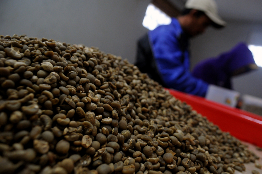 Indonesia Seeks to Re-brew its Coffee Glory