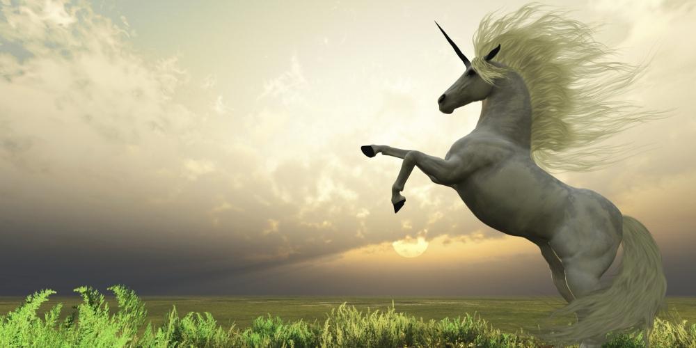 A Southeast Asian Unicorn Aims to Bridge India and Indonesia