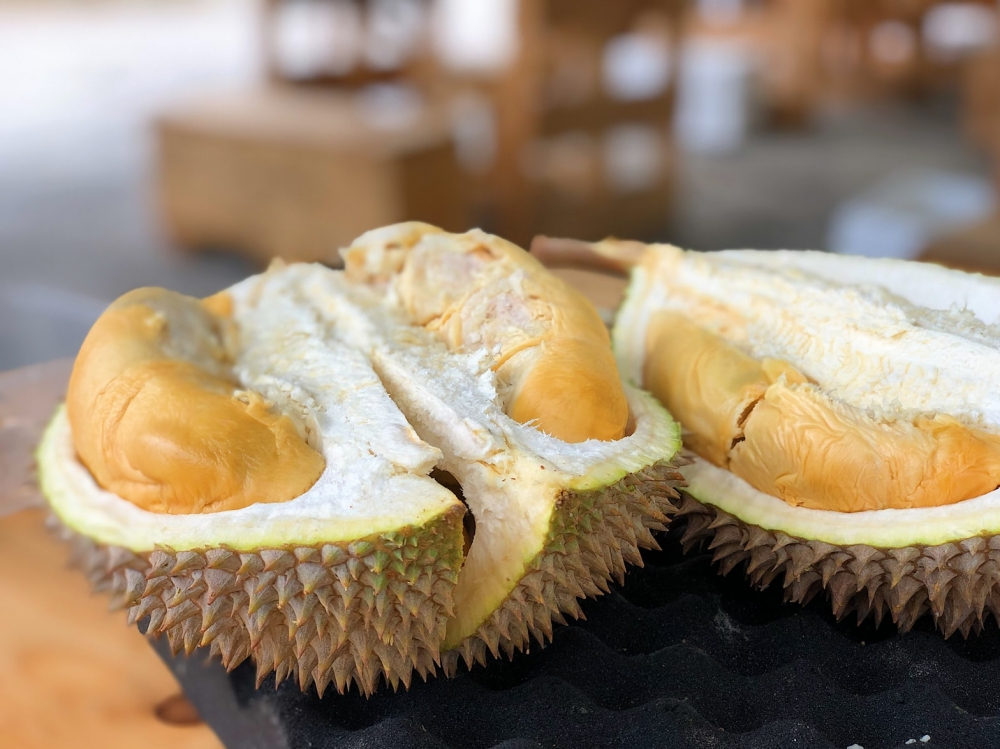World's Largest Durian Exporter, Revealed