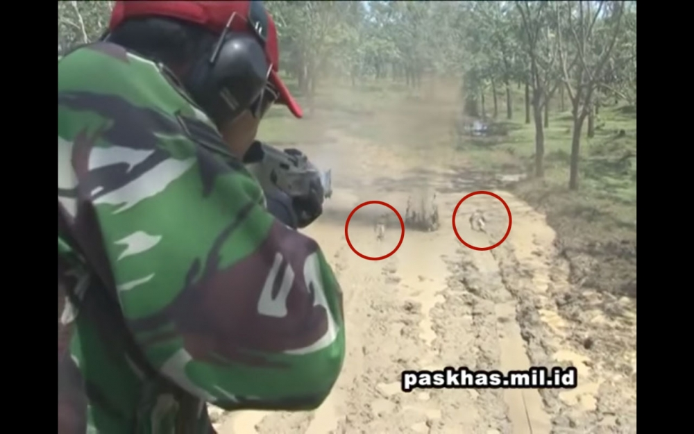 Dopper : Indonesia Special Forces Extreme Live Fire Training Video